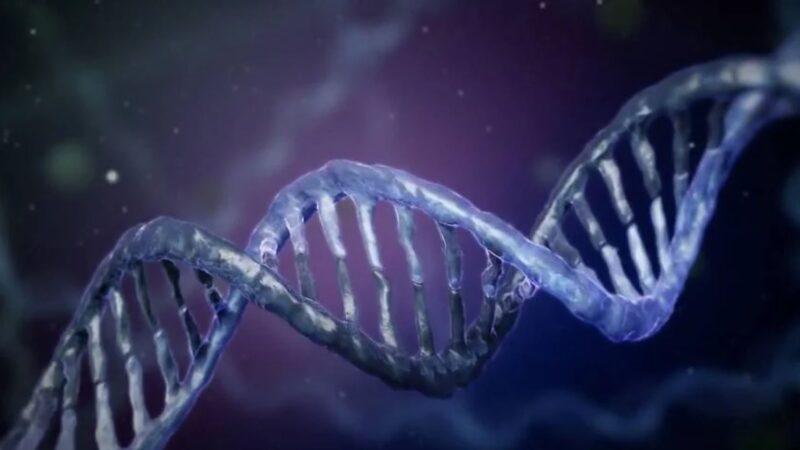 全球仅一例!因全身DNA断裂在极度痛苦中死亡