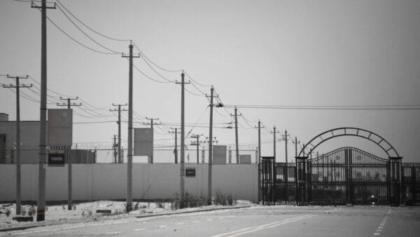 山东任城监狱207人确诊 监狱长等5人获刑