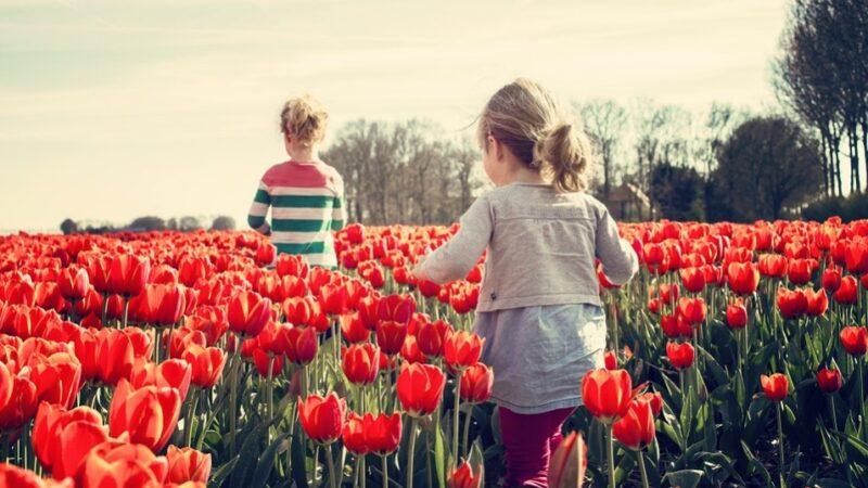 小女孩的濒死经历 来到了天上花园