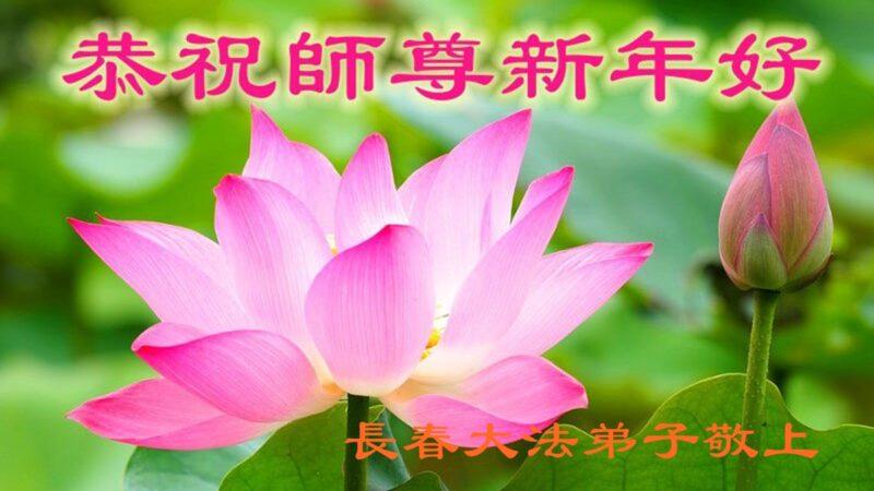 长春大法弟子恭祝师尊新年好(22条)