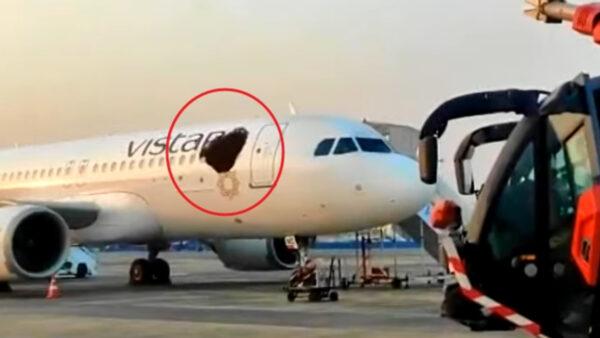 """印度客机遭蜂群""""围攻"""" 机身宛如破大洞"""