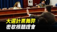 【重播】密歇根議會舉行選舉誠信公聽會