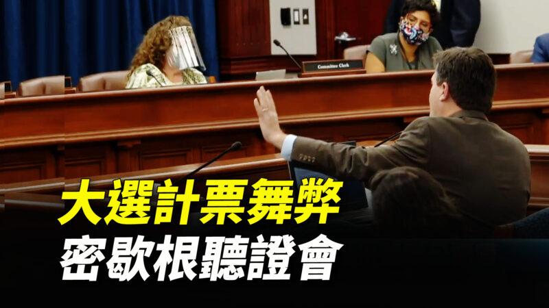 【重播】密歇根议会举行选举诚信公听会
