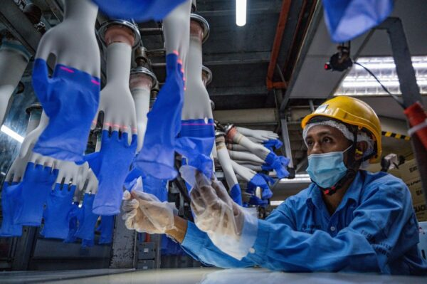 Top Glove爆群聚感染 员工披露防疫散漫遭开除