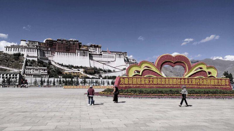 赵立坚:西藏活佛转世 必须遵守国家法律
