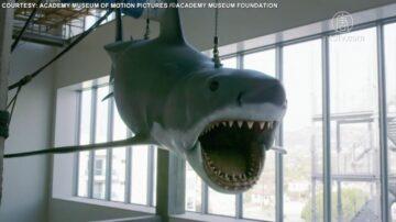 電影《大白鯊》模型 獲洛杉磯博物館收藏