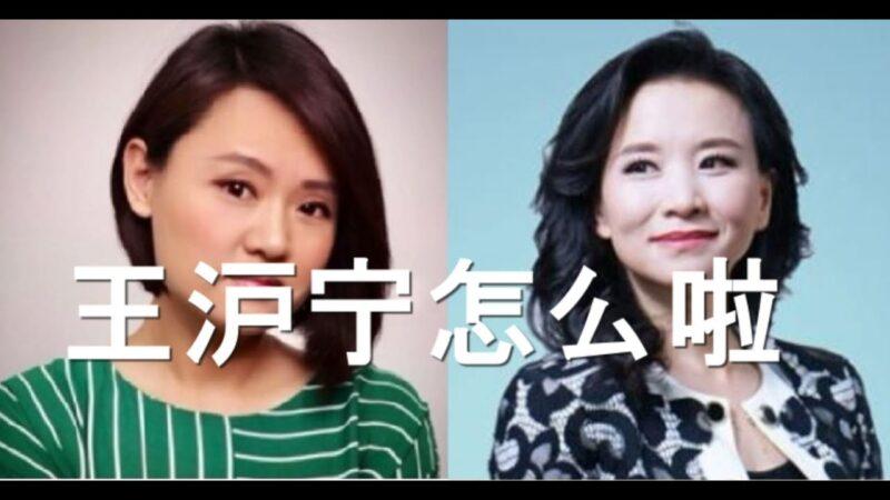 陳破空:王滬寧怎麼啦?專找美女記者下手