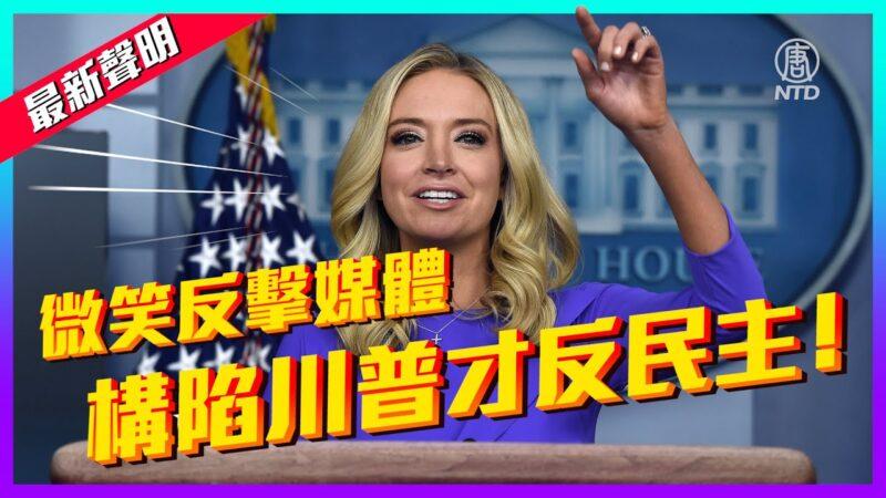 【老外看美国大选】白宫发言人:构陷川普才是反民主!