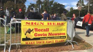 反对极左洗脑教育 加州民众罢免州长纽森