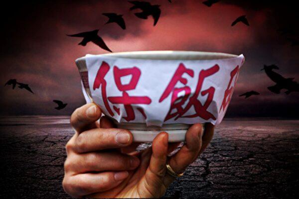 【财商天下】2021年大饥荒?谁来养活中国