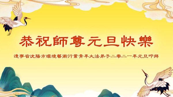60余行业法轮功学员 恭祝李洪志师父新年好