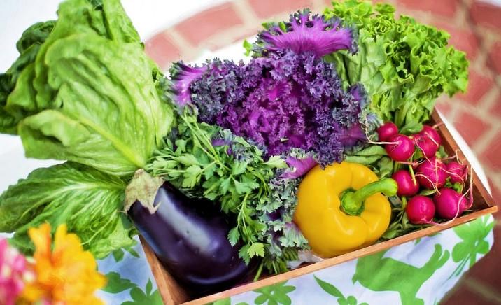 疫情下保护身体免疫力 早餐不能少3种食物
