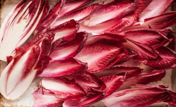 香醋炖菊苣