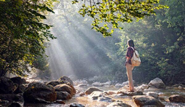 森林浴舒壓又抗癌 實證3大療癒功效