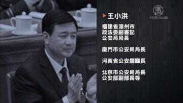 中共公安部副部長王小洪被舉報到29國