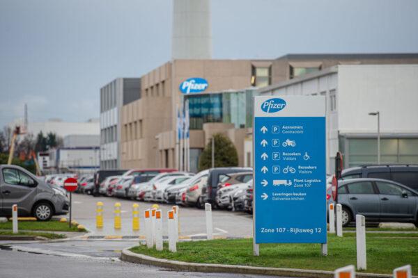 輝瑞突然修整工廠延交疫苗 歐盟爆不滿