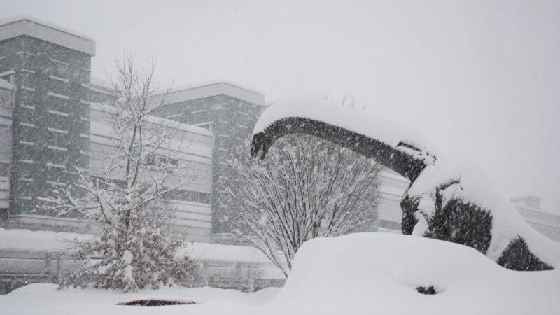 日本北陆逾千辆车受困大雪 出动自卫队