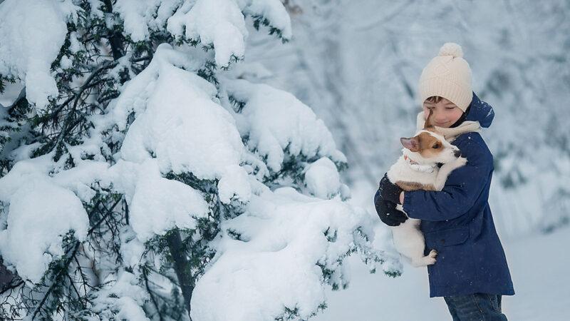 俄國寵物狗勇撲惡狼救下小主人 不幸遇難