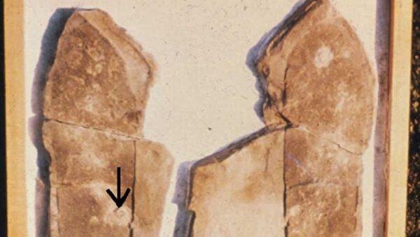 《转法轮》中提及的若干史前文明案例(1)三叶虫脚印化石