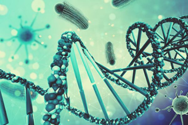 将数据存入活细菌基因里 人类首例