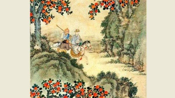 """【西游义趣】之十五:千年""""稀柿""""今朝净"""