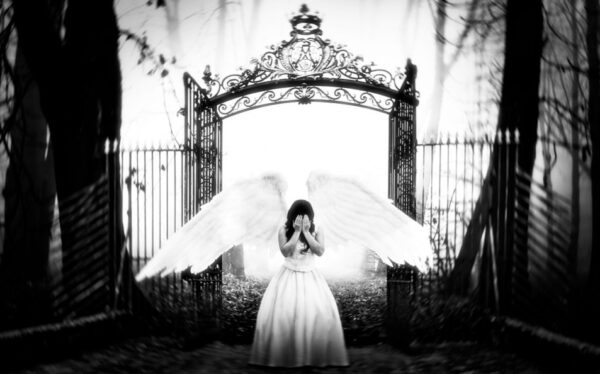 死亡只是幻覺 生命將持續循環