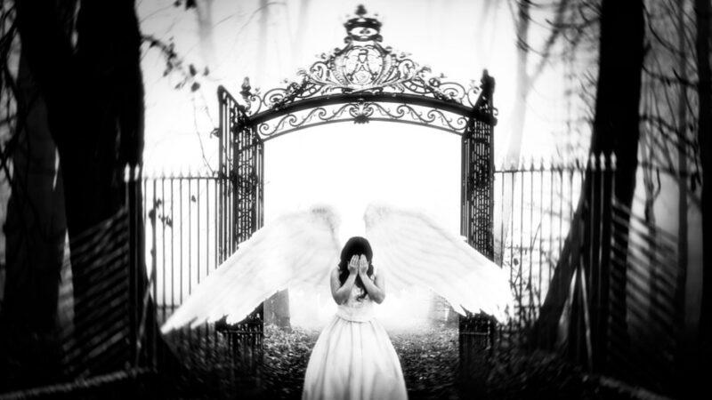 死亡只是幻觉 生命将持续循环