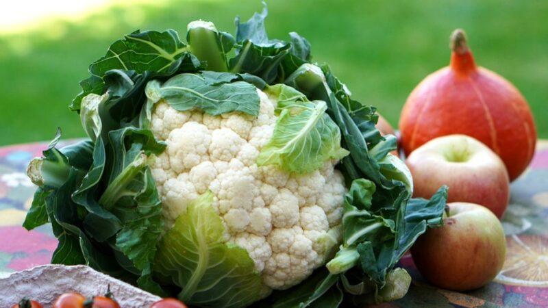 穷人的医生 天赐的良药 这种平价蔬菜是宝