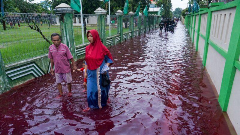"""""""红水""""袭击印尼村庄 网友疯传奇景照"""