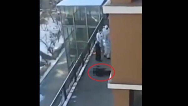 绥化市封城惨剧继续 有人跳楼有人裸奔