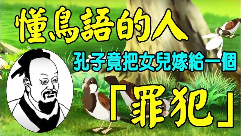 【解密时分】懂得鸟语 历史上真有这样的人