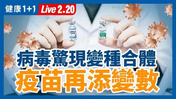 【重播】疫情回落 新变种合体 新冠疫情扑朔迷离?