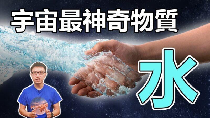 【地球旅館】人體70%都是水,人到底有多特別?看完後,你還敢亂說話嗎?