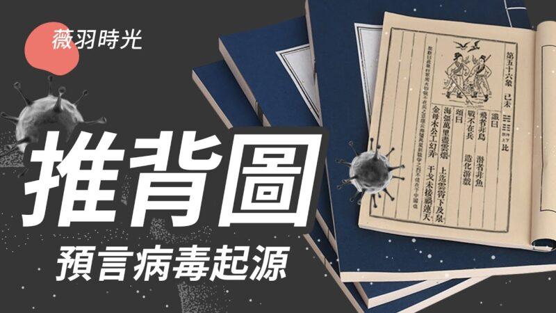 【薇羽時光】推背圖 預言病毒起源