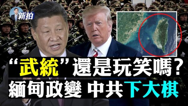 【拍案惊奇】翠字惹怒习近平 武统从凤梨开始?