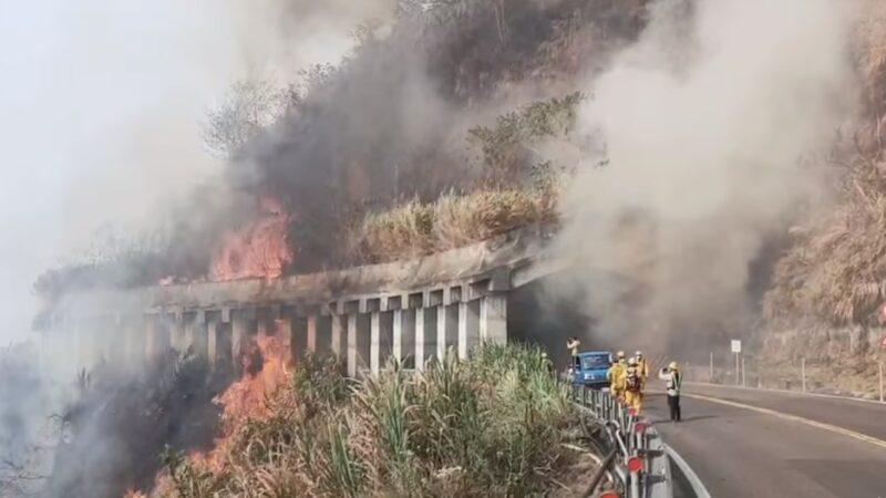 久旱乾燥 阿里山森林大火延燒20小時難撲滅(視頻)