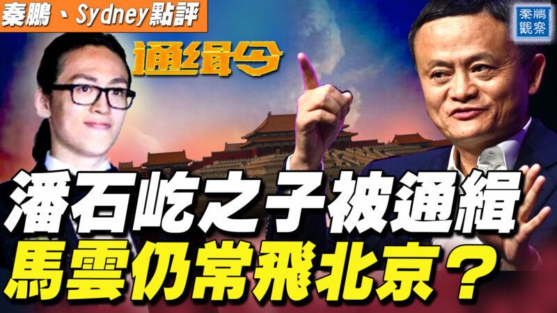 【秦鵬直播】潘石屹之子被通緝 馬雲仍常飛北京