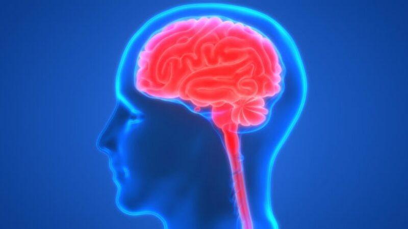 增强记忆力很简单 9招健脑 防大脑老化