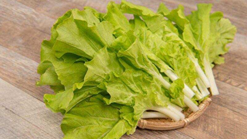 小白菜是高钙蔬菜 还助解毒 4招避免农药下肚