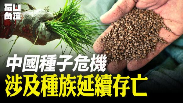 【有冇搞錯】習近平談「種子危機」 涉及種族延續存亡
