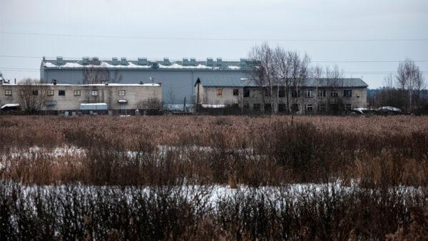 俄反对派领袖进最严监狱之一 国际人权专家吁释放