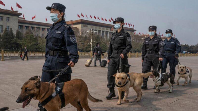 「西門慶控告潘金蓮」驚動高層?黨媒放話釋信號