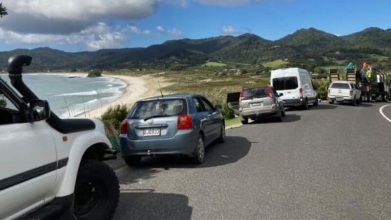 新西兰3次强震至8.1级 海啸警报已解除