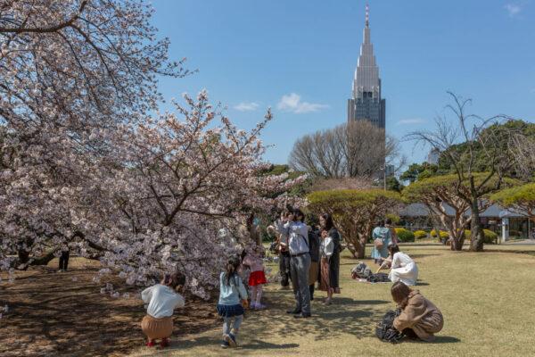 日本疫情回溫 東京大阪新增病例超過去年夏天