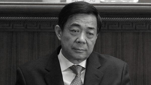 """习近平国师张维为 曾捧薄熙来""""政治家在做大事"""""""