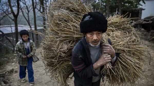 中共令政府國企購買貧困縣產品 製造「脫貧」數據