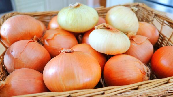 【美食天堂】5种长久保存洋葱方法 1年都新鲜