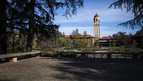 新研究:中国学生进大学后学术能力不升反降