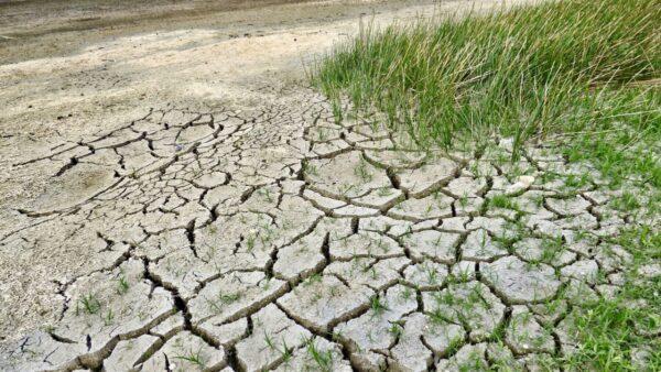 雲南多地嚴重乾旱 庫塘乾涸見底 學校停水