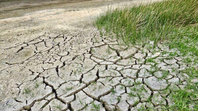 云南多地严重干旱 库塘干涸见底 学校停水